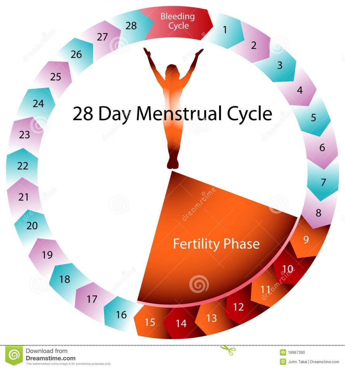 Dias Fertiles Mujer Calendario.Metodo Del Ritmo Sexo Seguro