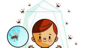 zika_prevencion